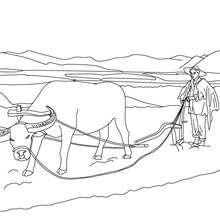 Desenho de um fazendeiro arando a terra para colorir