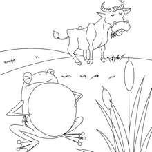Desenho do SAPO QUE QUERIA SER BOI para colorir