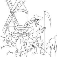 Desenho do conto de fada do GATO DE BOTAS para colorir