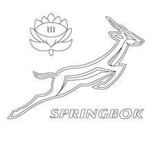 Desenho para colorir do  logotipo do time da Africa do Sul, Springbok