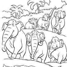 Colorindo a rota dos elefantes