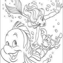 Ariel, Linguado e Sebastião