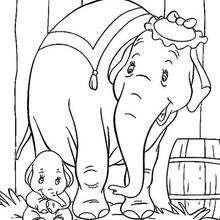 O bebê Dumbo