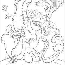 O leão Samson e o esquilo, para colorir