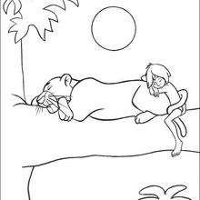 Balu dormindo com Baguera