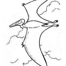 Desenho de um pássaro pré-histórico voando para colorir