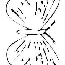Desenho de uma Borboletas voando para colorir