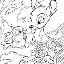 Bambi e o coelhinho na grama