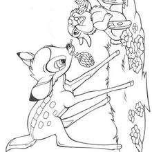 Bambi e tambor comendo