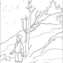 Pedro em Nárnia