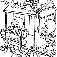 Huguinho, Zezinho e Luisinho, os adoráveis sobrinhos de Donald
