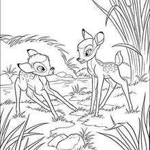 Bambi com um desconhecido