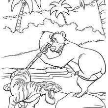 Balu enfrentando o temível tigre
