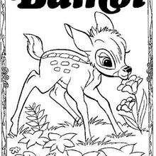 Bambi cheirando uma for