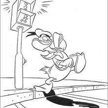 Pato Donald, o marinheiro