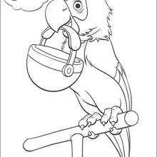 O Papagaio sonhando com um osso