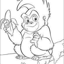 O esperto macaquinho com sua banana, para colorir
