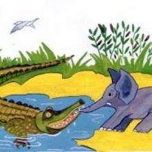 Crocodilo e elefante