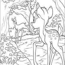 Bambi e a armadilha