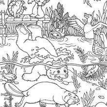 Desenho do Franklin com o Urso para colorir