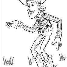 Woody no gramado