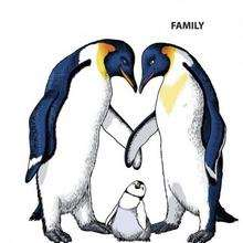 A família pinguim
