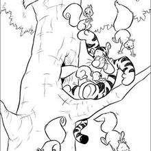 O Tigrão com os esquilos