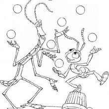 Vida de Inseto, bicho-pau brincando com a formiga