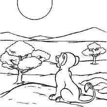 Simba observando a lua