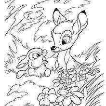 Bambi no bosque com o seu amigo Tambor