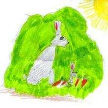 Coelhinhos sob o Sol