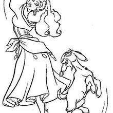 Colorindo Esmeralda e Djali tocando