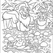 Simba, Timon e Pumba tomando banho sem preocupações