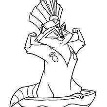 Desenho do Guaxinim muito guloso, Meeko para colorir
