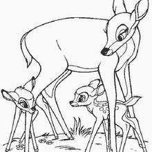 Bambi com seu novo amiguinho