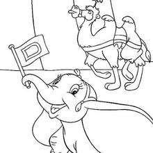 Dumbo e o camelo