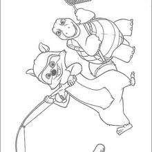 A tartaruga Verne e o guaxinim RJ