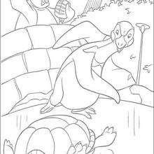 A tartaruga e outros animais a procura de Ryan