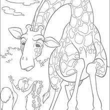 A girafa e o esquilo, para colorir