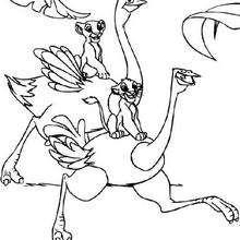 Filhotes de leão brincando com um Avestruz