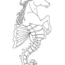 Desenho de HIPOCAMPO para colorir
