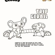 TRIPGERBIL de OS CROODS para colorir