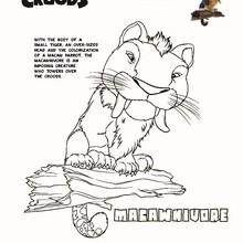 MACAWNIVORE de OS CROODS para colorir