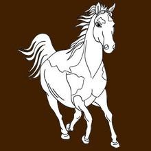 animal, Desenhos de ANIMAIS DA FAZENDA para colorir