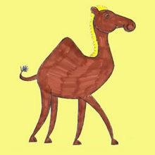 Como desenhar um camelo