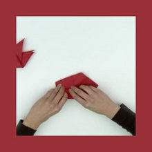 Origami de um cisne