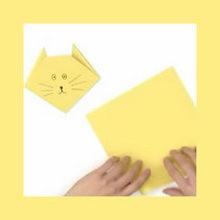 animal, Origami de Gato