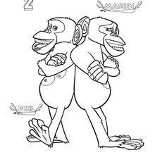 Madagascar 2 : desenho dos chimpanzés para colorir
