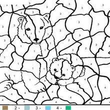 Colorindo a família de ursos pelos números