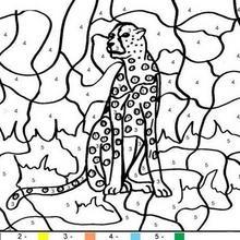 Colorindo o tigre pelos números
